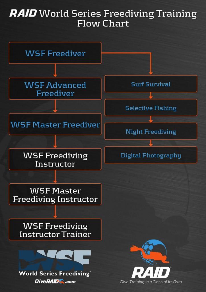 RAID Program Flow Charts LR_Pagina_3